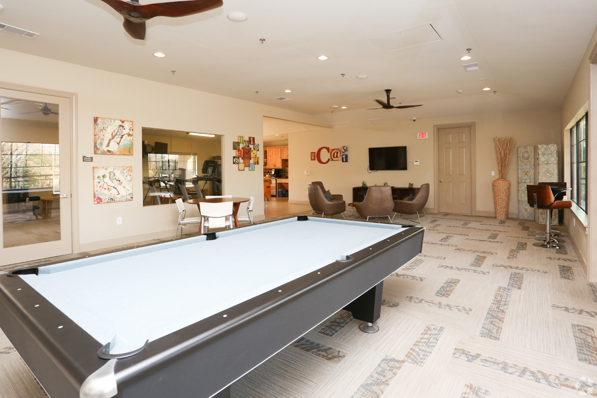 Game room with pool table, lounge seating and satellite TV